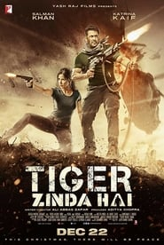 Tiger Zinda Hai (2017) Full HD MOVIE  Watch Online Free