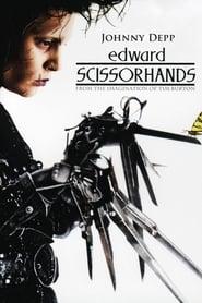 Edward Scissorhands 1990 Poster