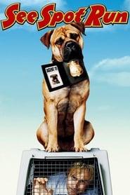 Spot: Um Cão da Pesada