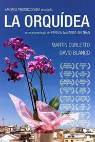 La Orquídea (2016) Zalukaj Online