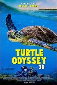 Turtle Odyssey streaming sur Streamcomplet