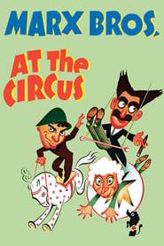 En dag på cirkus
