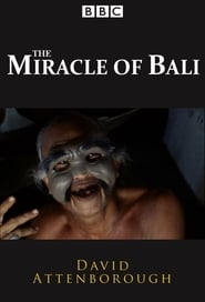 The Miracle of Bali 1969