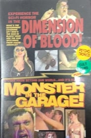 Dimension of Blood