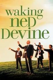 Waking Ned