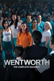 Wentworth: Staffel 3