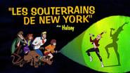 The New York Underground!