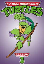 Teenage Mutant Ninja Turtles Season 3 Episode 14