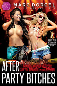 After Party Bitches poster