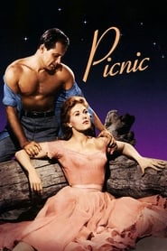 Poster for Picnic