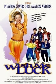 Poster Wish Me Luck 1995