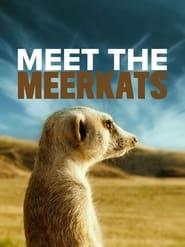 Meet The Meerkats (2021)