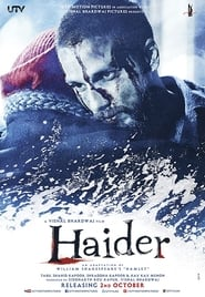 Haider (2014) Hindi BluRay 480P & 720P GDrive