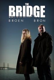 serie tv simili a The Bridge