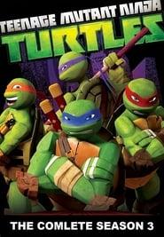 Teenage Mutant Ninja Turtles - Season 3 poster