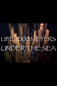 Life 2,000 Meters Under the Sea