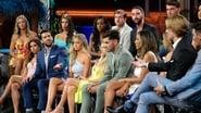 Bachelor in Paradise Season 6 Episode 13 : Week 7: The Season Finale