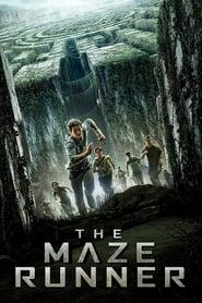 Poster for The Maze Runner