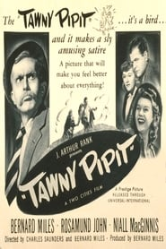 Tawny Pipit