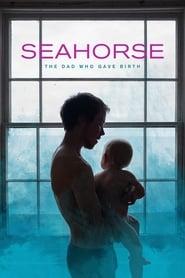 مشاهدة فيلم Seahorse مترجم