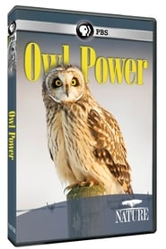 Owl Power (2015)