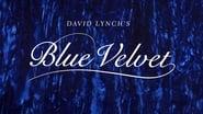 Blue Velvet images