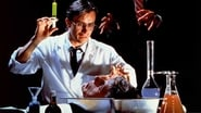Re-Animator en streaming