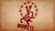 EUROPESE OMROEP   12 Monkeys