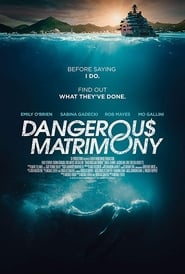 Dangerous Matrimony : The Movie | Watch Movies Online