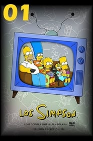 Los Simpson: Temporada 1