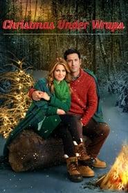 Film Online: O surpriză de Crăciun – Christmas Under Wraps (2014), film online subtitrat în Română
