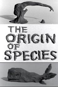 Clay or the Origin of Species (1965)