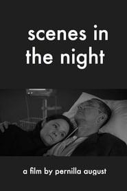 Scenes in the Night