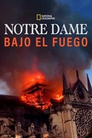 Notre-Dame : Carrera contra el infierno (2019)