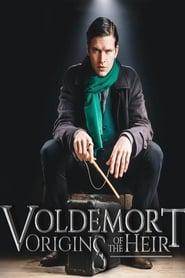 Voldemort: Origins of the Heir 2018
