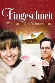 Eingeschneit – Weihnachten im Schneesturm (1994)