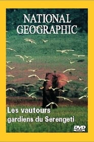 National Geographic : Les Vautours, gardiens du Serengeti