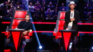 The Voice Season 8 Episode 4 : The Blind Auditions, Part 4
