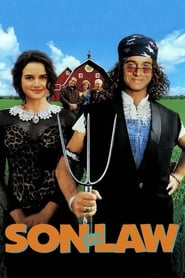Poster Son in Law 1993