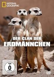Der Clan der Erdmännchen 2011