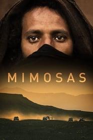 Poster Mimosas 2016