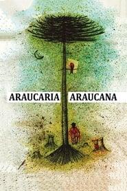 Araucaria Araucana 2018