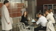House Season 6 Episode 10 : Wilson