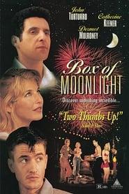 Box of Moonlight (1996)