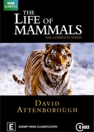 Poster The Life of Mammals 2003