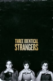 Three Identical Strangers (2018) Watch Online Free