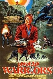 Poster Ninja Warriors 1985