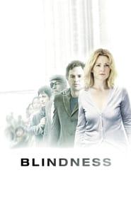 Poster for Blindness