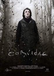 Corvidae poster