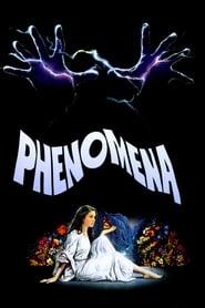 Poster Phenomena 1985